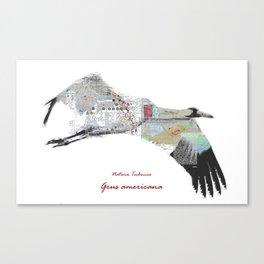 Natura Technica - Whooping Crane Canvas Print