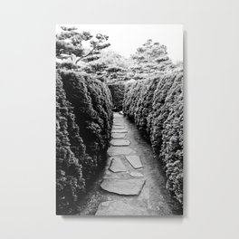 Paths Metal Print