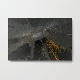Milky Way Above Sequoia Metal Print