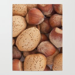 Hazelnuts and almonds Poster