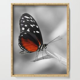 Butterfly 22 Serving Tray