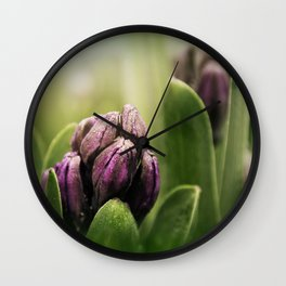 Hyacinths in Dew Wall Clock