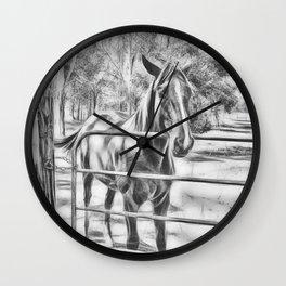 Calm horse standing near gate in Queensland Wall Clock