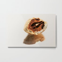 Gold Tree Nut Metal Print