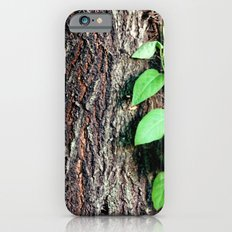 Wrinkles in Nature iPhone 6s Slim Case