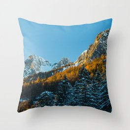 Autumn and winter scenery Throw Pillow