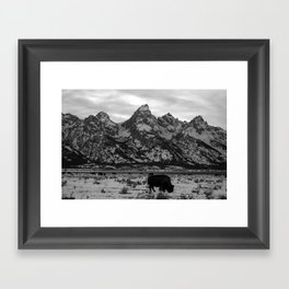 Bison and the Tetons Framed Art Print