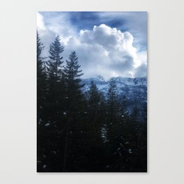 Snowy Mountains Behind a Green Forest (Victoria, B.C.) Canvas Print