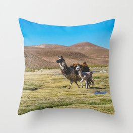 Mother and Baby Llama in Bolivia Throw Pillow