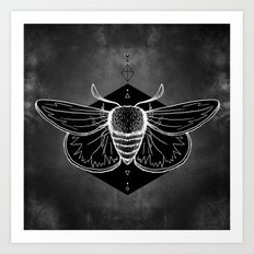 Moth Vignette Art Print
