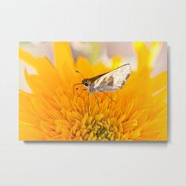 Fluttery Friend Metal Print