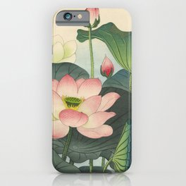 Water Lily Blooms  iPhone Case