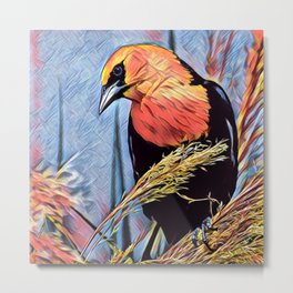 Yellow-headed Blackbird Metal Print