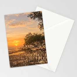 Dawn over the mudflats and mangrove tree, Phang Nga Bay, Phuket, Thailand Stationery Cards