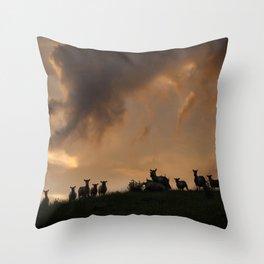 Evening time Throw Pillow