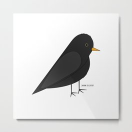 Common Blackbird Metal Print