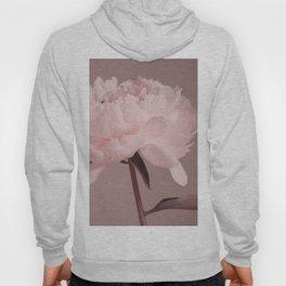 Single peony (pink) Hoody