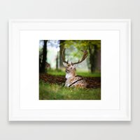 bambi Framed Art Prints featuring Bambi  :)  by Ironia Art