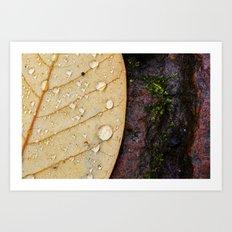 November Rain. Art Print