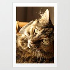 Thoughtful cat Art Print