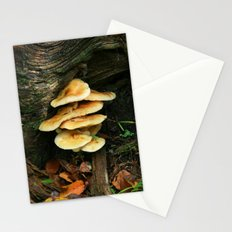 Lichen - Fungi Stationery Cards