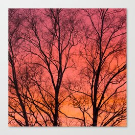 Tree Silhouttes Against The Sunset Sky #decor #society6 #homedecor Canvas Print