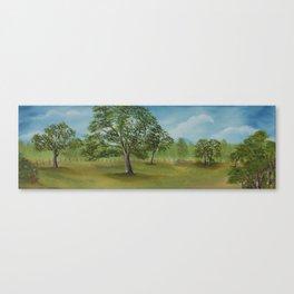 Our backyard Canvas Print