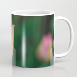 Soft Pastel Colors Tulips at Lake Maggiore in Italy Coffee Mug