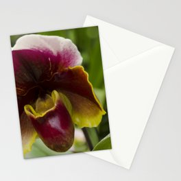 Multi Colored Orchid on the blur green phone Stationery Cards