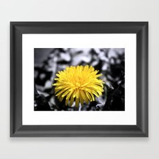 Sunny Yellow Framed Art Print