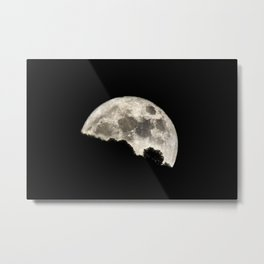Super Moon sunrise through the trees. 14-11-2016 Metal Print