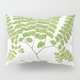 Adiantum Pedatum (Northern Maidenhair Fern) from Ferns British and Exotic (1856-1860) by Edward Jose Pillow Sham