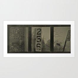 Kodiak Art Print