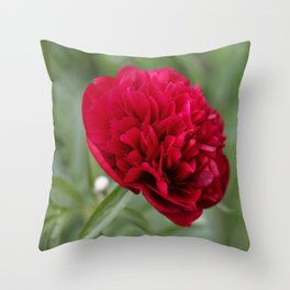 Red Peony in Bloom Throw Pillow