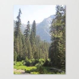 Tokopah Falls Hike Canvas Print