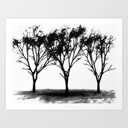 Winter's Shadow Art Print