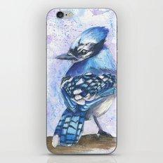 Blue Jay iPhone & iPod Skin