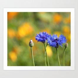 flowerpower -16- Art Print