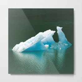 Blue Ice Swan Floating in Alaskan Waters Metal Print