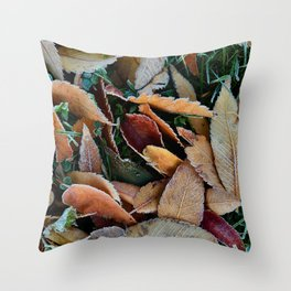 frosty mornings Throw Pillow