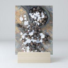 Rock Salt and Pepper Corns Mini Art Print