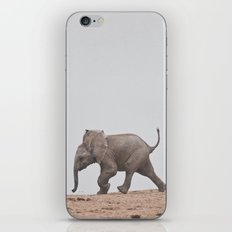Baby Elephant iPhone & iPod Skin