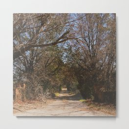 Old abandoned road Metal Print