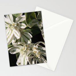 Green and White Flowers Stationery Cards