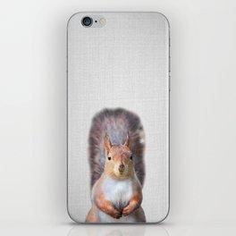 Squirrel - Colorful iPhone Skin