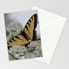 Eastern Tiger Swallowtail Butterfly Nestled Among Flowers Stationery Cards