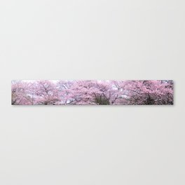 The Cherry Blossom, Tokyo Canvas Print