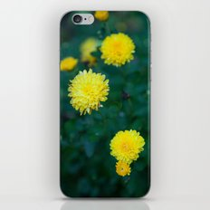 And it was all Yellow iPhone & iPod Skin