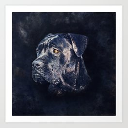 Cane Corso - Italian Mastiff Portrait Art Print