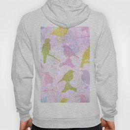 Pastel Birds Hoody